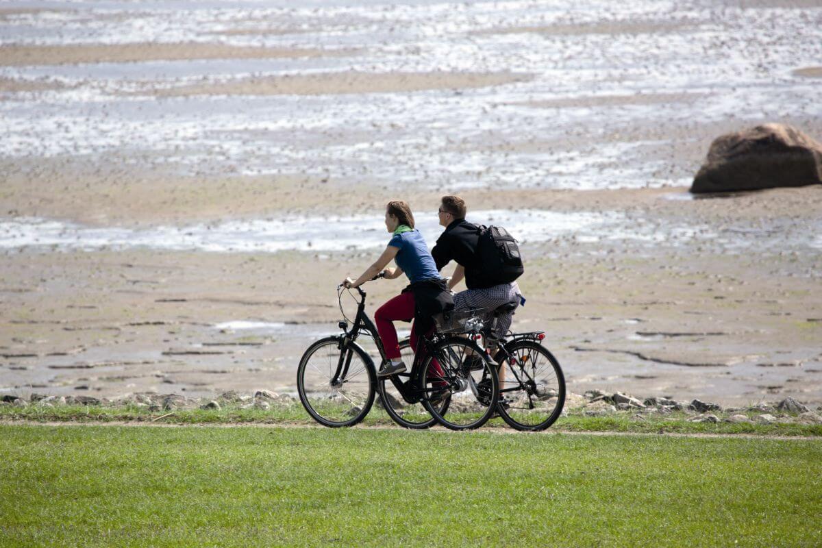 Watt und saftige Wiesen machen das Radfahren auf Sylt zu einem tollen Naturerlebnis.